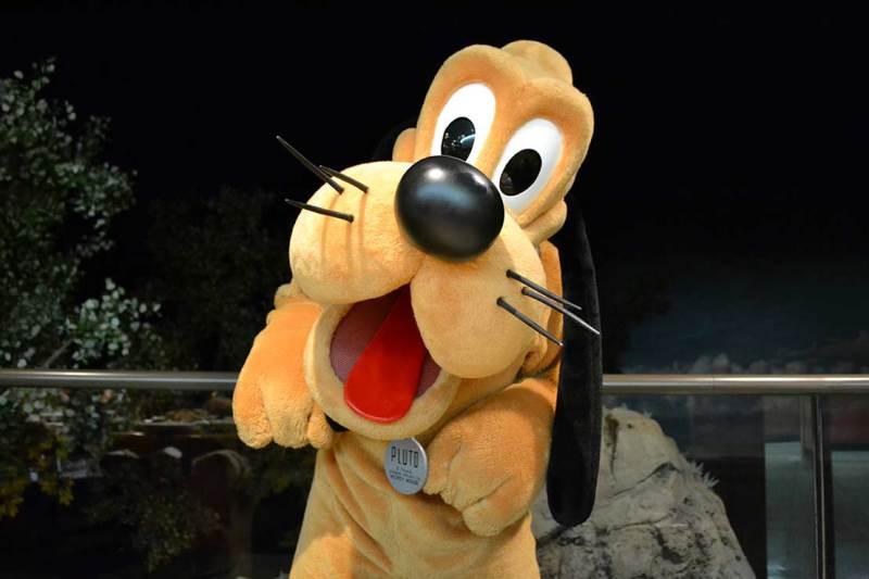No Garden Grill você pode tirar sua foto com o Pluto, Tico, Teco e Mickey.