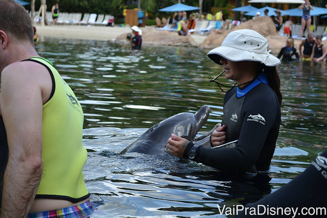 Golfinho brinca com a treinadora e com os visitantes do Discovery Cove