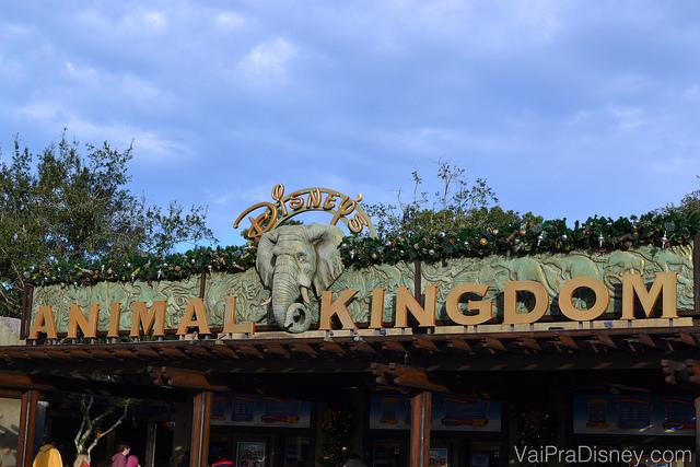 O Animal Kingdom é um parque bem aberto, por isso vale visita-lo no dia menos frio durante a sua viagem.