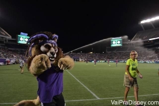O mascote do time também acompanha o jogo nos Estados Unidos. Foto do leão vestido de roxo que é o mascote do Orlando