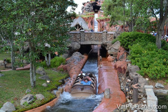 Todo mundo curte a Splash Mountain.