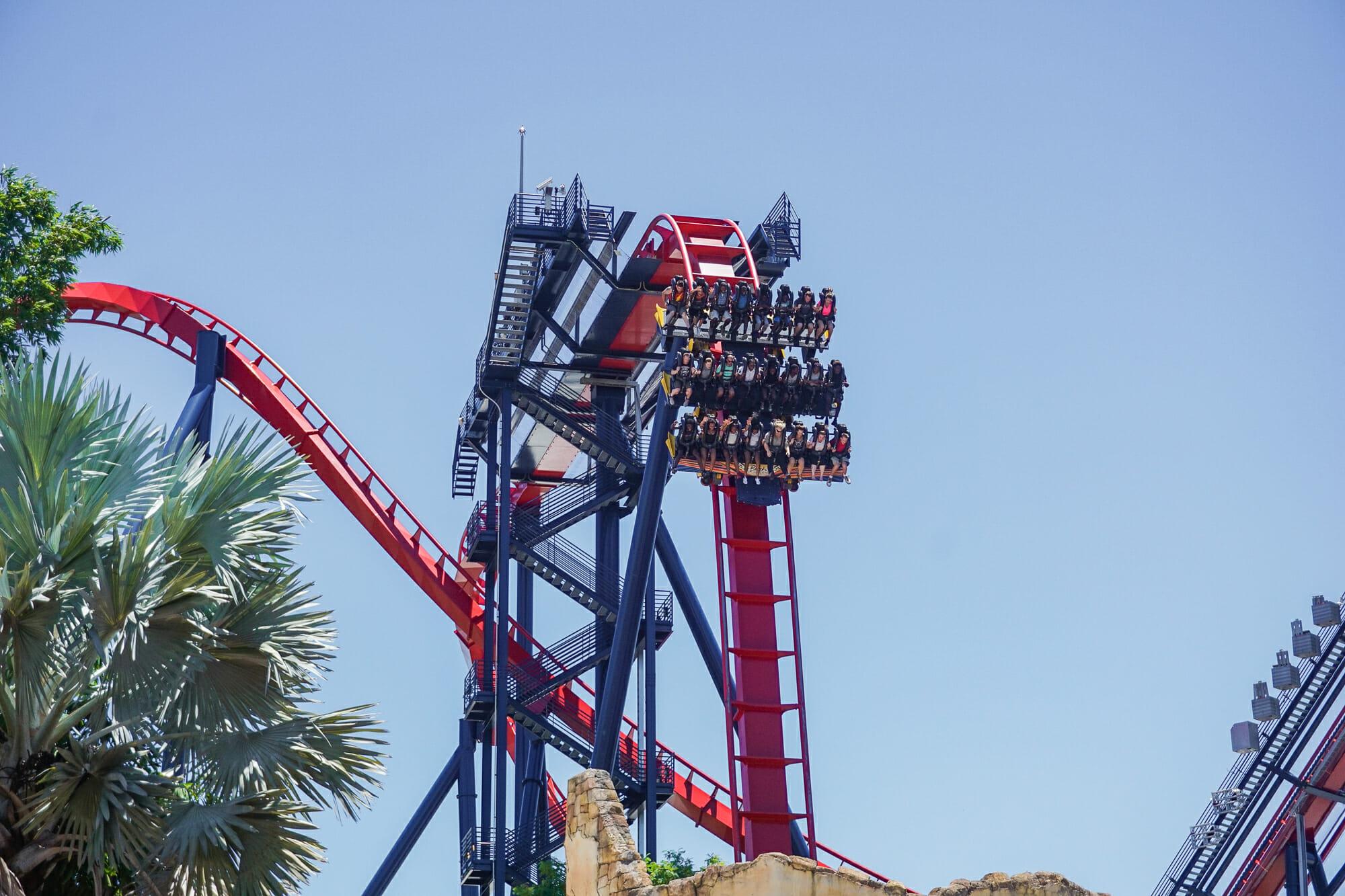 Foto da montanha-russa Sheikra, do Busch Gardens. O carrinho está no alto de um looping, e é possível ver os trilhos curvados e o céu azul ao fundo.