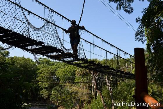 Foto da ponte de madeira pela qual os visitantes passam no Wild Africa Trek, com crocodilos logo abaixo dela