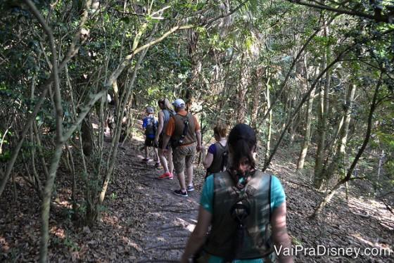 Foto dos visitantes andando pela trilha dentro do Animal Kingdom.