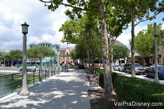 CELEBRATION-FLORIDA-ORLANDO-05