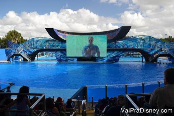 Lembre-se que o Quick Queue não te dá acesso a lugares reservados nos shows do Sea World. Foto do show das baleias antes de começar, com a arquibancada cheia