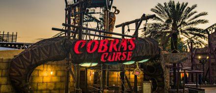 COBRAS-CURSE-BUSCH-GARDENS-01