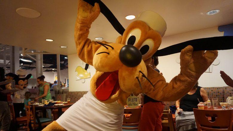 Foto do Pluto com avental de chef, posando para a câmera