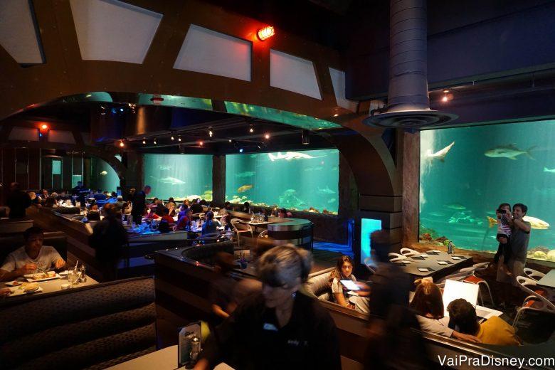 O interior do Sharks Underwater Grill, com aquários no lugar de paredes e mesas aconchegantes