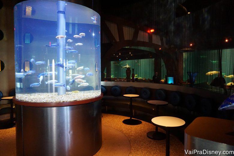 Mais um aquário, no centro das mesas para esperar para entrar no Sharks Underwater Grill