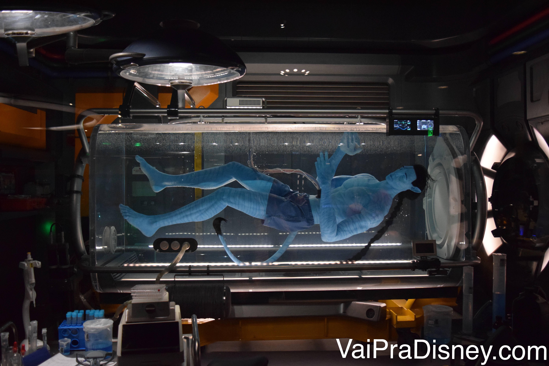 Réplica de um Avatar na fila do Flight of Passage em Pandora