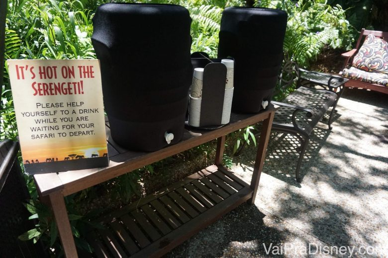 Mesinha com água e copos para beber antes do início do safari