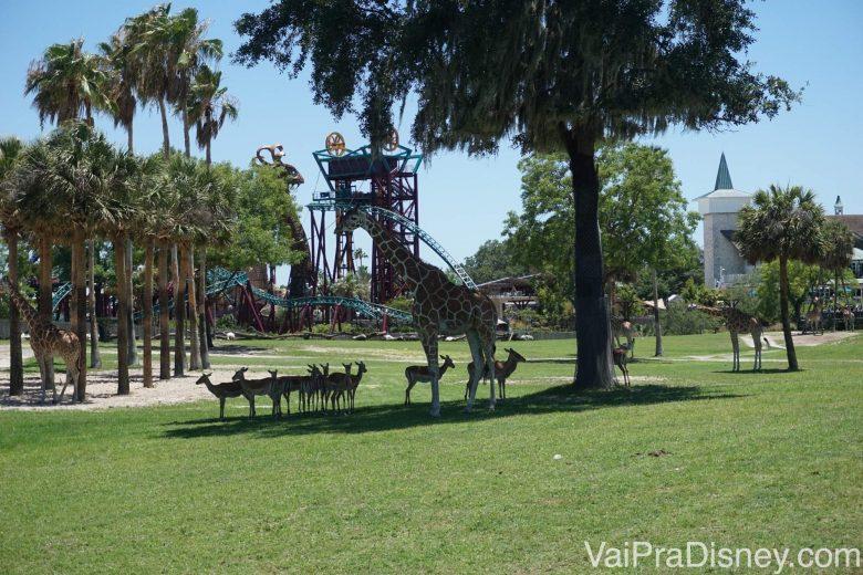 Outras girafas fotografadas mais de longe na savana