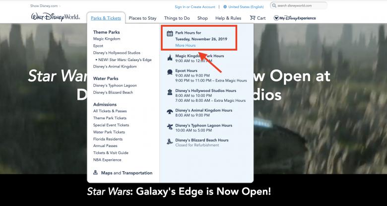 Como verificar os horários dos parques no site da Disney
