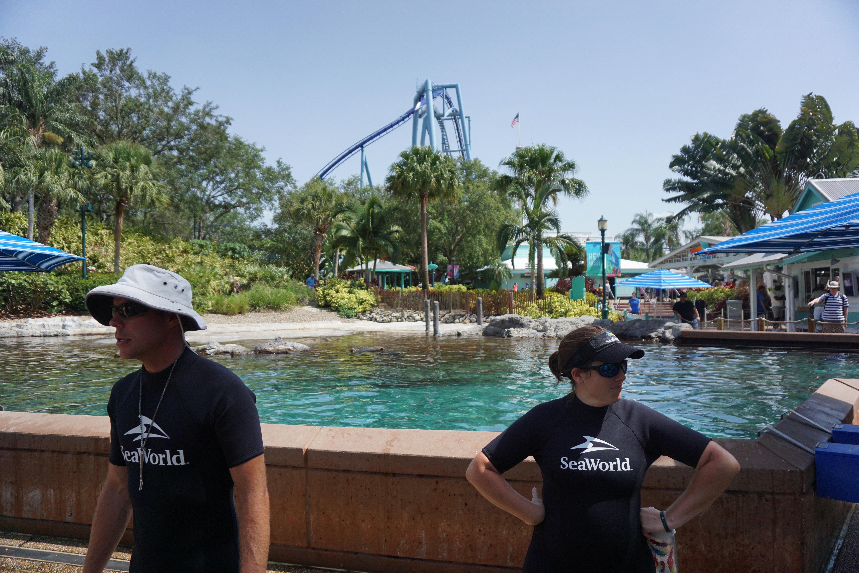 Na beira do tanque nos juntamos a outros instrutores para ouvir mais sobre os golfinhos.
