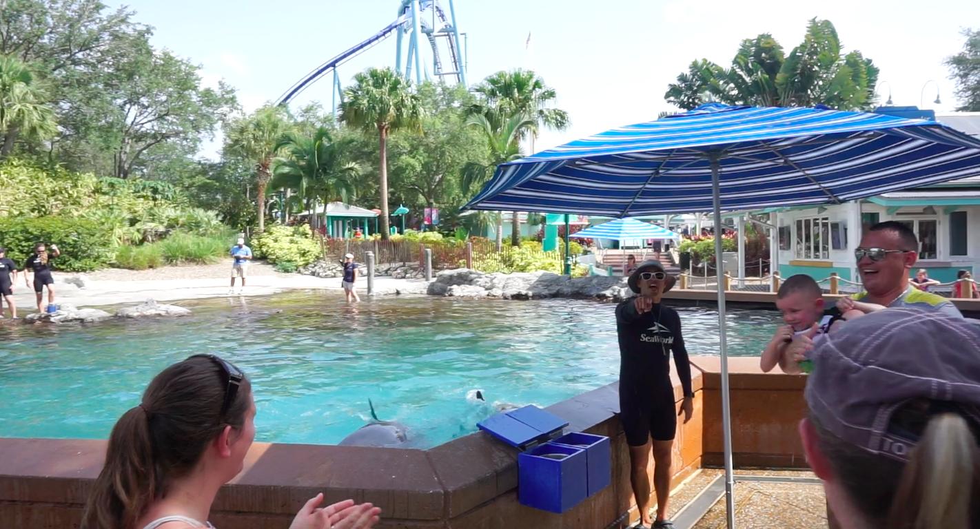 O instrutor me dando uma bronca por ter pego minha câmera pra tirar foto durante o Dolphin Up-Close Tour. Nesse momento, ele estava apontando pra mim e gritando: você vai se molhar!