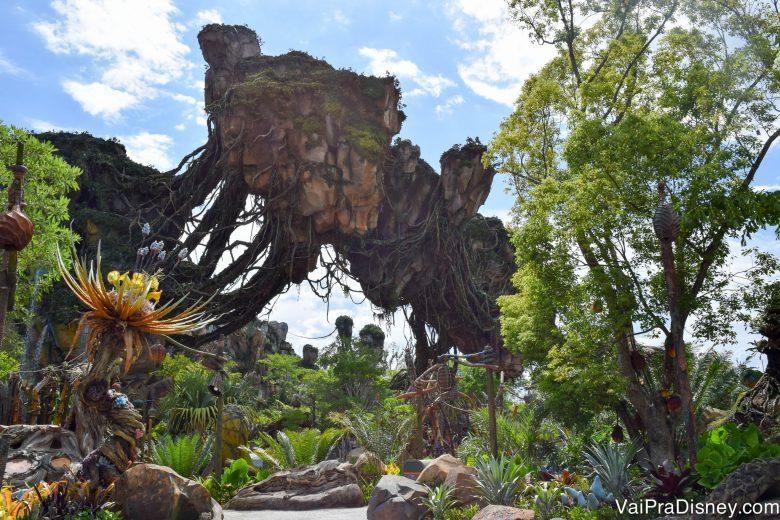 A área de Avatar tem filas grandes todos os dias do ano!