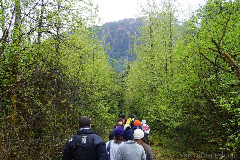 Todo mundo entrando na trilha!