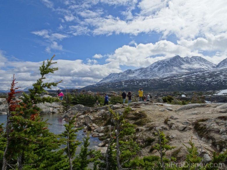 Foto da paisagem durante o passeio do Alaska