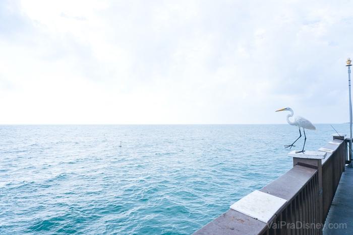 Foto do pier 60 na praia de Clearwater, com uma gaivota pousada na madeira.