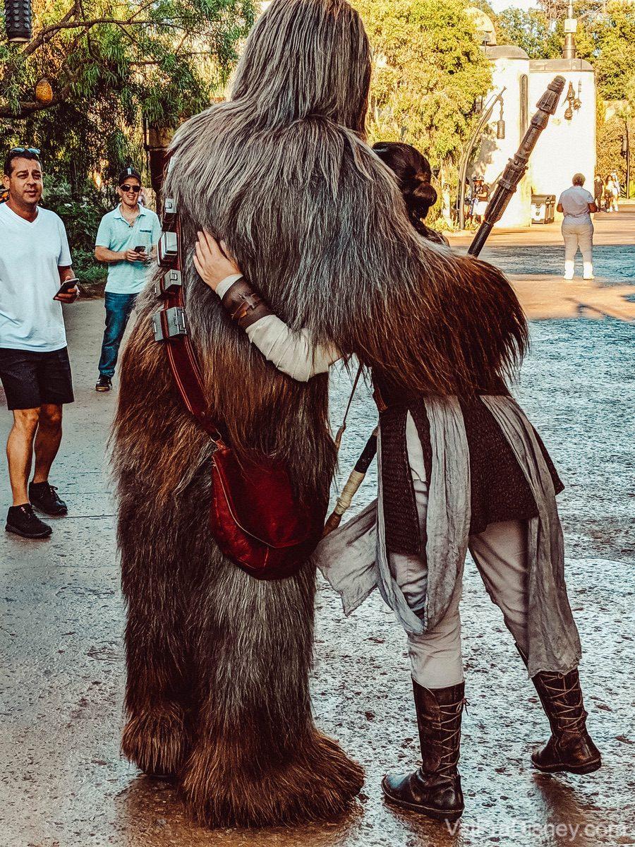 Foto dos personagens Chewbacca e Rey se abraçando, vistos de costas, na área de Star Wars