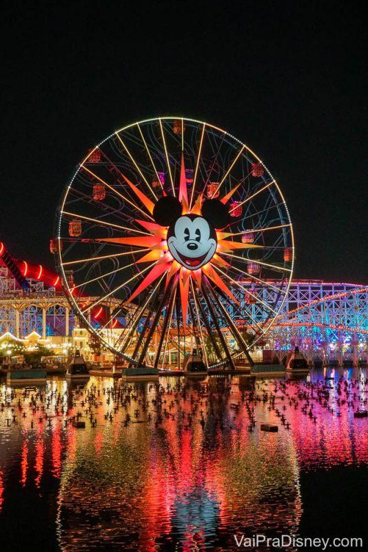 California Adventure - Não perca o show noturno do parque!