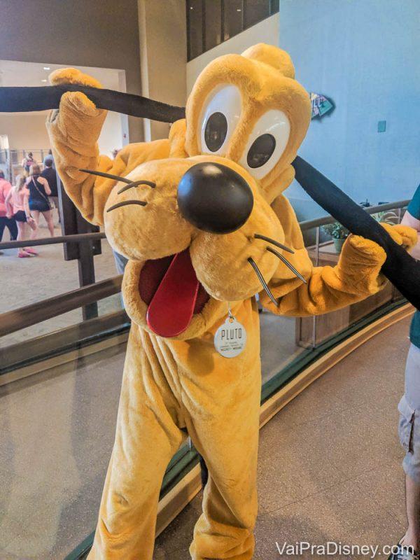 Foto do Pluto posando para a câmera