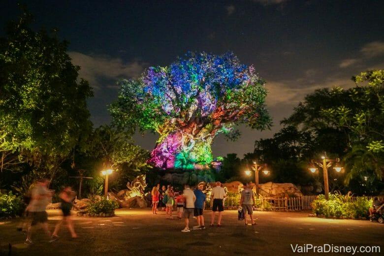 Foto da Árvore da Vida do Animal Kingdom iluminada durante a noite, com luzes multicoloridas, e visitantes passeando pelo parque.
