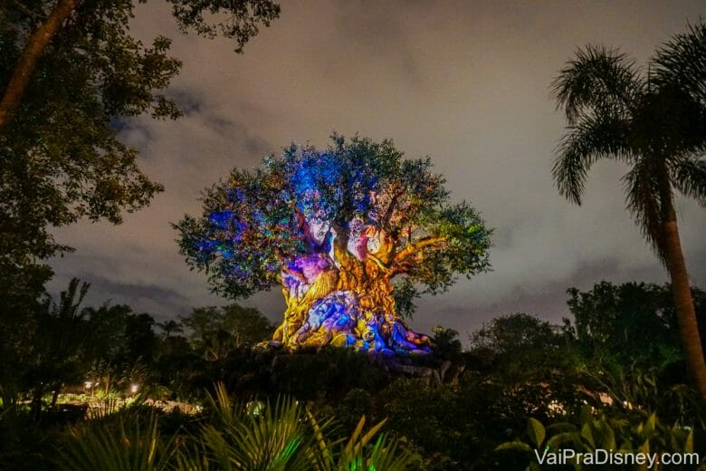 Foto do Animal Kingdom à noite, com a Árvore da Vida iluminada com luzes multicoloridas e outras árvores ao redor.