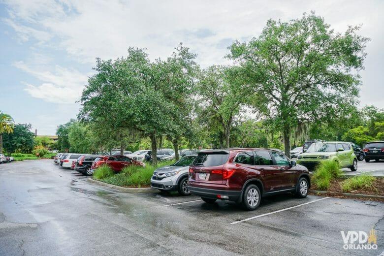 Imagem dos carros no estacionamento de um dos parques. Os hóspedes da Disney não pagam estacionamento nos parques, mas pagam nos hotéis.