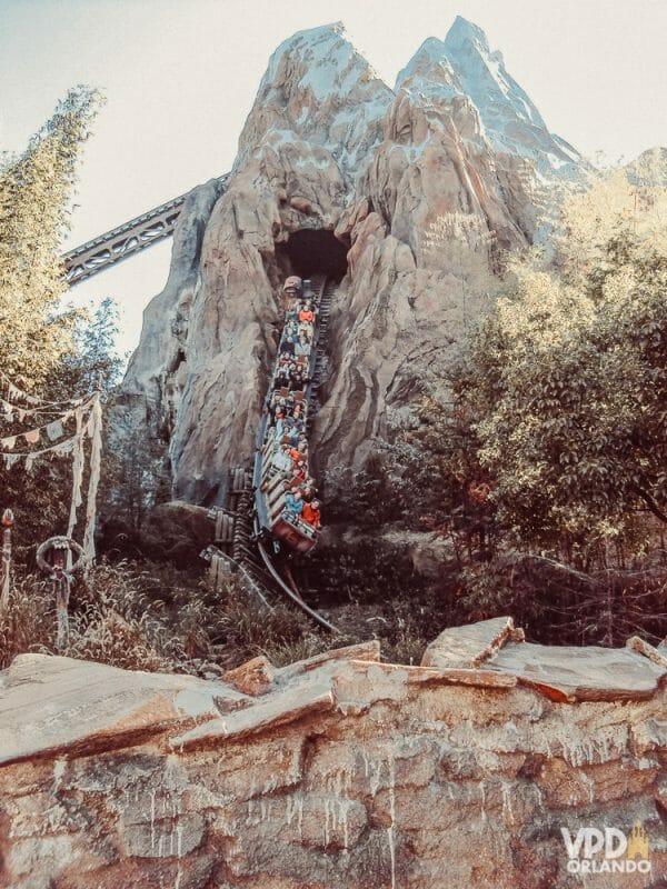 A Everest é a atração mais radical do Animal Kingdom, e uma das mais radicais de toda a Disney! Foto do carrinho saindo pela lateral da montanha, na montanha-russa Everest