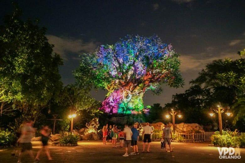 Vale ficar no Animal Kingdom até mais tarde. Foto da Árvore da Vida iluminada em diversas cores, durante a noite, com alguns visitantes por perto.