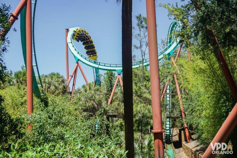 Kumba no Busch Gardens. Foto dos trilhos curvados da montanha-russa Kumba no Busch Gardens