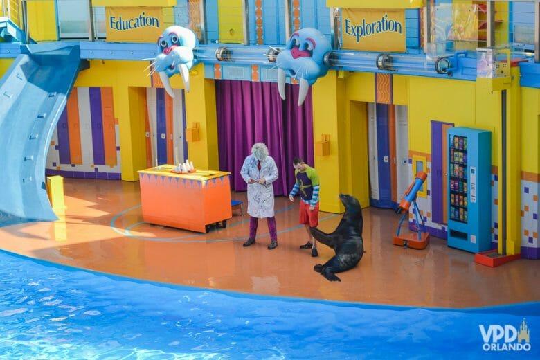 Esse é um dos shows mais divertidos do SeaWorld. Foto do palco durante o show Clyde and Seamore's Sea Lion High, com leões marinhos.