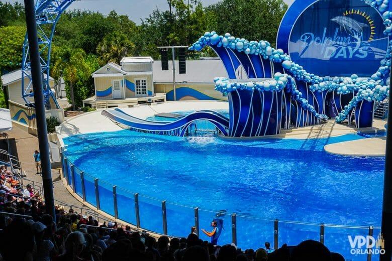 Além do show com as baleias, tem também o Dolphin Days com golfinhos no SeaWorld. Foto da piscina onde acontece o show com golfinhos Dolphin Days