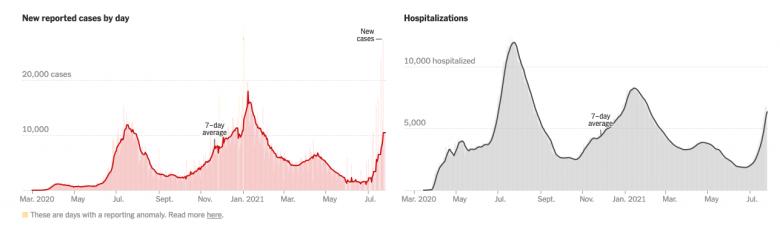 Gráficos mostrando aumento de casos e hospitalizações na Flórida.